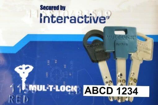 Mul-T-Lock Interactive Security Card
